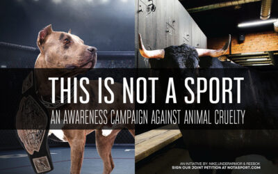 This is not a sport! – An animal cruelty awareness campaign.